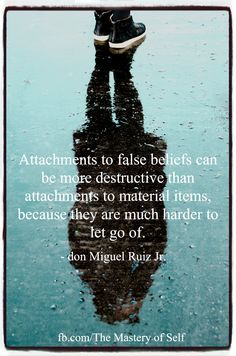 The Mastery of Self by don Miguel Ruiz Jr.  Visit the link below to read a FREE excerpt from this NEW book: http://www.hierophantpublishing.com/mastery-self-don-miguel-ruiz-jr-extended-excerpt/