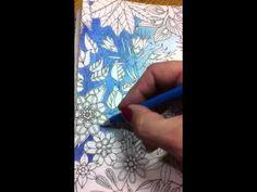 Livro Jardim Secreto -Secret Garden- fundo com lapis de cor - YouTube
