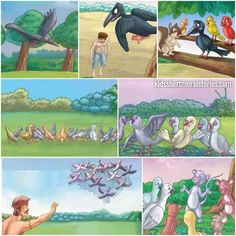 Panchatantra Stories in English: Story of The Hunter And The Pigeons with Moral: United you always wins.