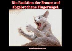 Reaktion auf abgebrochene Fingernägel. Ausraster-Bild!