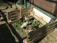 """build a low compost bin (4 sided with removable slates)&  put it in the chicken run.  They will """"work"""" the pile helping it decompose and the insects & worms that are attracted to the compost will also become food for the chooks"""