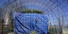 Avec du treillis soudé, on peut presque tout faire au jardin pour 3 fois rien ! Par exemple, un tunnel à tomates