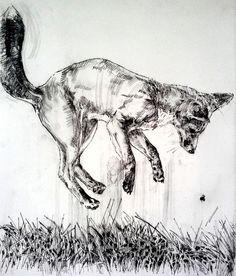 'FUR' drypoints - EMERSONMAYES - Fine Artist