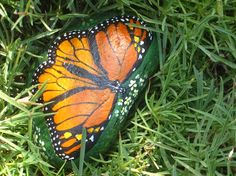 Monarch butterfly painted rock on Etsy