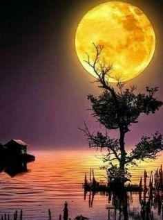 Good Morning, Moon, Celestial, Night, Outdoor, Buen Dia, The Moon, Outdoors, Bonjour