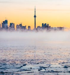 This is another cool dawn concept of Toronto. Seattle Skyline, New York Skyline, Cn Tower, Album Covers, Dawn, Toronto, Concept, Travel, Trips