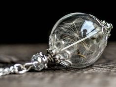 Real Dandelion glass globe Necklace silver Blown by RafFinesse Personalized Necklace, Personalized Gifts, Silver Necklaces, Beaded Necklaces, Dandelion Necklace, Terrarium Necklace, Glass Globe, Glass Ball, Anniversary Gifts