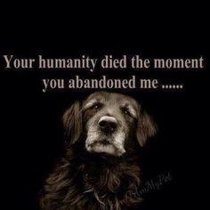 !!!!!!! SHAME ON YOU HUMAN!!!