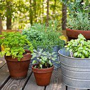 6 Smart Tips: Backyard Garden Flowers Porches pallet garden ideas diy.Corner Garden Ideas How To Build garden ideas diy yards. Porch Vegetable Garden, Garden Patio Sets, Front Porch Garden, Easy Garden, Corner Garden, Garden Kids, Garden Edging, Garden Pond, Terrace Garden
