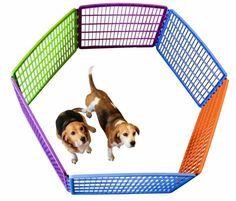 Find Pet Accessories in Randburg! Search Gumtree Free Classified Ads for Pet Accessories and more in Randburg. Playpen, Pet Accessories, Pet Products, Baby Animals, Pets, Baby Pets, Dog Playpen, Animals And Pets, Pet Supplies
