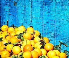 Lemon ! Marrakech / Morocco !