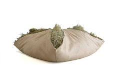 Seat cushions made with real hay.