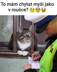 So I have to catch a mouse with a mask? Funny Animal Memes, Funny Cat Videos, Cute Funny Animals, Funny Cats, Funny Quotes, Funny Memes, Jokes, Funny Spanish Memes, Spanish Humor