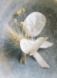 beautiful, delicate and unique lunaria boutonniere -a wedding series by Studio Mondine, Photo by Jen Huang