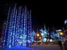 Sapporo White Illumination, Hokkaido - Seasonable Traditions ...