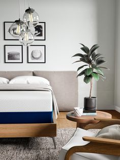 Don't you just love it when everything comes full circle? We sure do. That's why we make our mattresses out of naturally sourced plant-based materials – combining technological innovation with the basic comforts of nature. #amerisleep #CircleOfLife