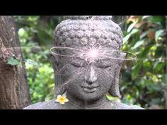 '...Existe um campo vibratório que liga todas as coisas que existem no Universo. Esse campo tem sido chamado de Akasha, Logos, o OM primordial, a música das esferas, o campo de Higgs, a energia escura, e milhares de outros nomes ao longo da história. Os professores anciões já tinham ensinado a Nada Brahma, que o Universo é vibração...' ( ler mais: http://www.bloggers-rule.com/blog/inner-worlds-outer-worlds-mundos-interiores-mundos-exteriores) - http://www.youtube.com/watch?v=RXICt-JHCzg