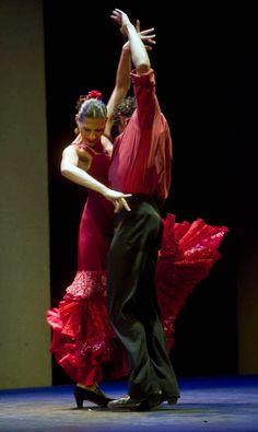 musée flamenco