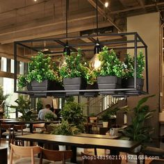 Wohnideen Iron Planter Chandelier If you have been interested in being a fashion designer for a whil Iron Plant, Modern Planters, Vintage Design, Hanging Lights, Solar Lights, Backyard Landscaping, Indoor Plants, Hanging Plants, Potted Plants