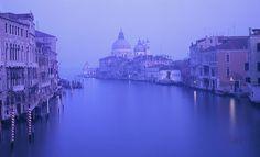 John Hall Venice
