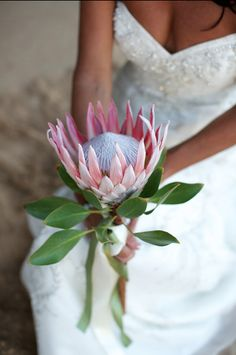 10 Awesome, Creative and Memorable Wedding Guest Book Ideas Flor Protea, Protea Bouquet, Pink Bouquet, Floral Bouquets, Flower Boquet, Protea Flower, Bridal Flowers, Wedding Themes, Ideas