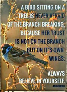 Good Morning  Beautiful Kings♚ And Queens♛  A Bird Sitting On A Tree  Is Never Afraid Of The Branch Breaking, Because Her Trust  Is Not On The Branch But On It's Own Wings.  Always Believe In Yourself. ~ Anonymous  #Goodmorning #TrustAndBelieveInYourself #Lifequotes #Motivation #Inspiration