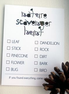 Scavenger hunt. Perfect for birthday party at the park!
