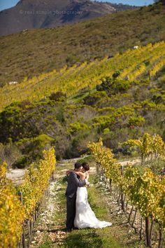 Wine lovers rejoice! Weddings in the Cape Winelands region.