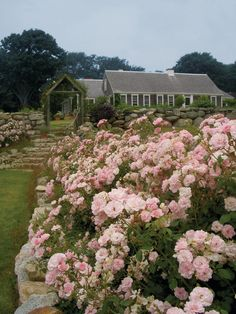 Lay of the Landscape: English-Style Gardens (16 / 17)  A neatly contained rose garden would not be out of place in this landscape style. It would offer color outside as well as flowers for your home's interior. If you're looking for a modern, fragrant update on a traditional rose, consider the David Austin varieties.Suzman Design Associates  Country Court Yard  http://www.suzmancole.com