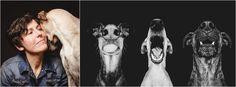 La photographe Elke Vogelsang et ses 3 chiens : Noodles, Scout et Loli