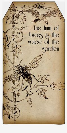 Bountiful Heirlooms: Free Printables: Bee and Beekeeping Tags Bee Crafts, Paper Crafts, Decopage, I Love Bees, Bee Art, Save The Bees, Bee Happy, Bees Knees, Queen Bees