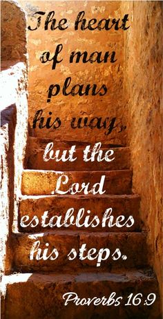 The heart of man plans his way,but the Lord establishes his steps. ~ Proverbs 16-9