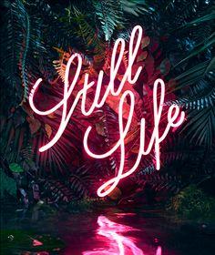 Tropical neon - still life