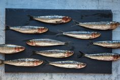 Good Catch | SAVEUR, Best Seafood Choices