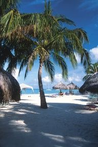 Honeymoon 101: Working with a Travel Agent. pinned with Pinvolve - pinvolve.co