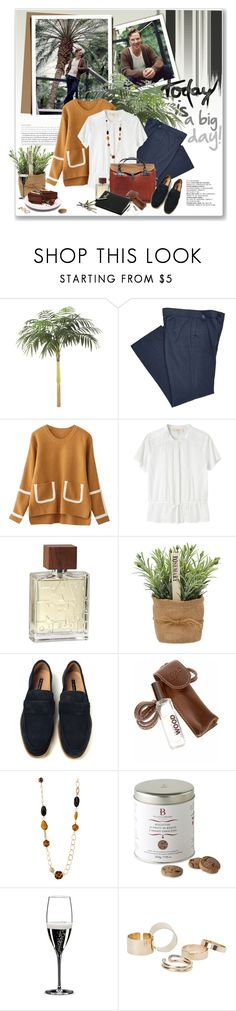 """Happy Birthday, Mr Cumberbatch!"" by daha-mk ❤ liked on Polyvore featuring Vanessa Bruno Athé, ZENTS, PS Paul Smith, Dsquared2, Riedel and MANGO"