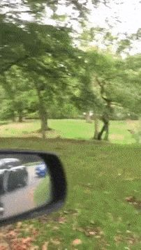 21 Best GIFs Of All Time Of The Week #169