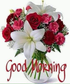 Good Morning Messages, Good Morning Greetings, Good Morning Wishes, Morning Quotes, Morning Blessings, Good Morning Picture, Morning Pictures, Good Morning Images, Good Morning Flowers Rose