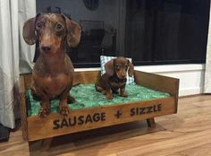 Sausage and little Sizzle...