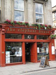 Elephant House, birthplace of Harry Potter, Edinburgh, Scotland