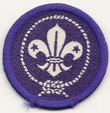 Resultado de imagen para promesa scout