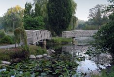 Ontario's hidden gems, 13 towns to visit