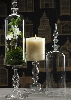 Paris Terrarium Lidded Candle holder <3