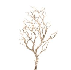 "F3410382 - 36"" GLITTERED BRANCH Champagne Frost Christmas Tree Theme"