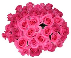 Flower Delivery - 50 Giant, Long Stem Hot Pink Roses From Spring in the Air Luxury Roses - http://yourflowers.us/flower-delivery-50-giant-long-stem-hot-pink-roses-from-spring-in-the-air-luxury-roses/