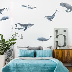 A variety of vinyl graphic whale wall decals in a bedroom on a white wall. There are a variety of baby, large, orca, and humpback whale wall decals in each pack, each featuring a variety of colors. Vinyl Wall Stickers, Wall Decals, Wall Art, Wall Vinyl, Framed Wall, Nautical Nursery, Sailboat Nursery, Sea Nursery, Whale Nursery