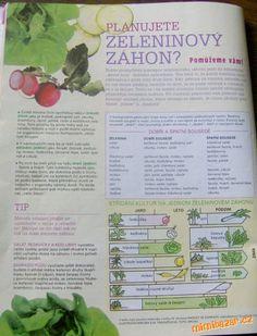 našla jsem v nějakém časopise, tak třeba se to někomu bude hodit... velké pěstitelky už to určitě zn... Diy Garden Projects, Land Art, Life Hacks, Home And Garden, Gardening, Lawn And Garden, Lifehacks, Horticulture
