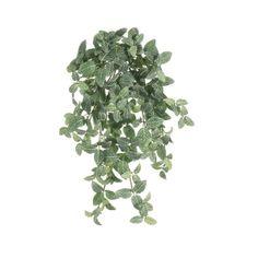 Mini Hanging Fittonia, 20'' Hanging Pots, Green Plants, Artificial Plants, Houseplants, Greenery, Decoration, Herbs, Canning, Mini