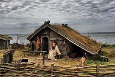 Image detail for -Viking village by ~mihahaela on deviantART