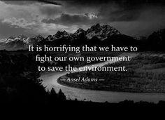 Via Greenpeace USA: https://www.facebook.com/photo.php?fbid=10151415514794684=a.56051414683.64313.5435784683=1